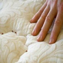 punaise de lit comment s'en débarrasser